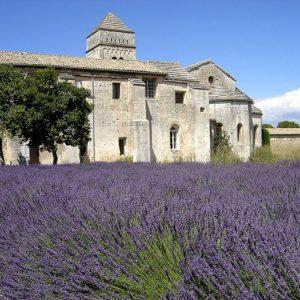Visite Guidée Saint Rémy